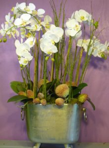 orchid and silver container